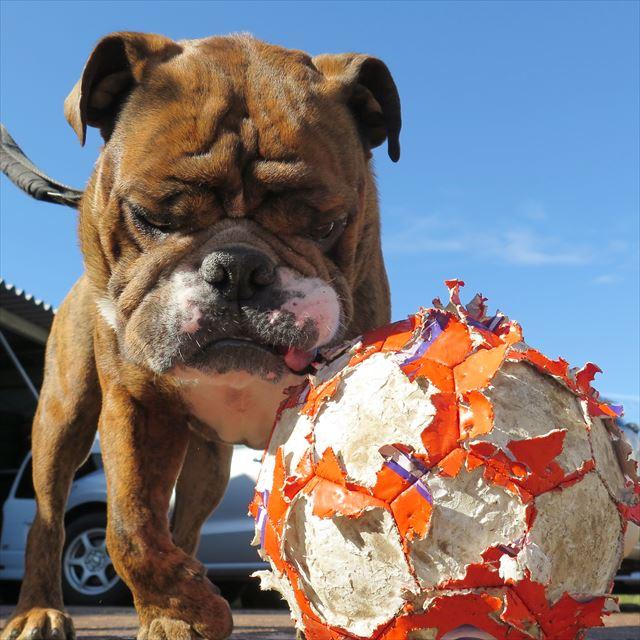 ボロボロサッカーボール