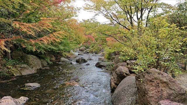2017年10月28日鳥屋野潟公園の紅葉