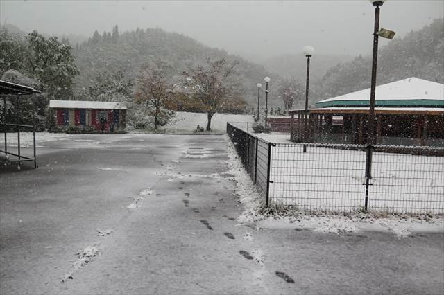 11月19日のわんわんぱーくに積雪