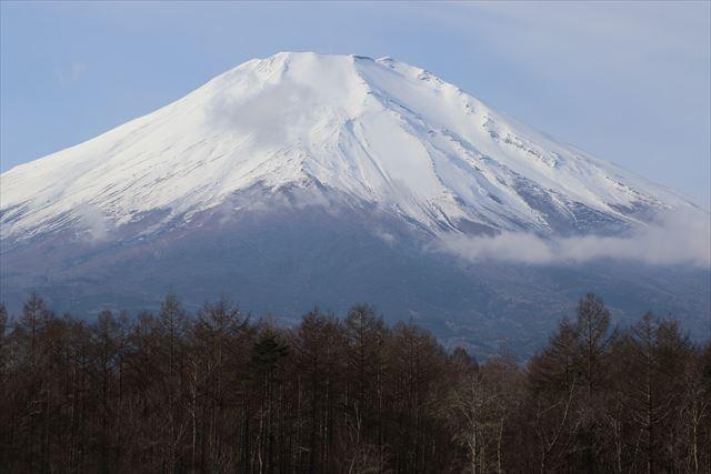 ドッグリゾートwoofからの富士山