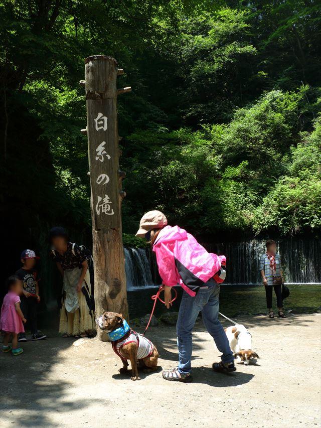 白糸の滝 記念撮影