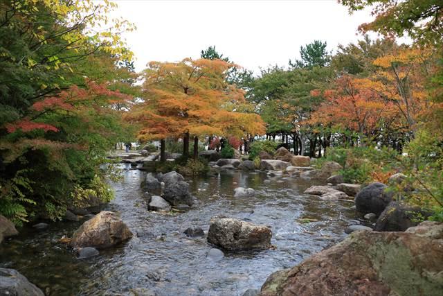 鳥屋野潟公園の紅葉
