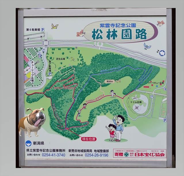 紫雲寺記念公園の案内図