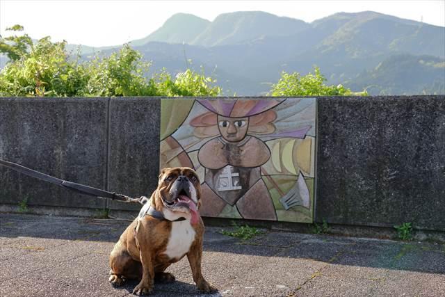 金太郎と金時山