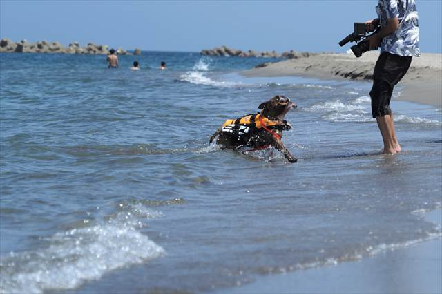 海でのTV撮影風景