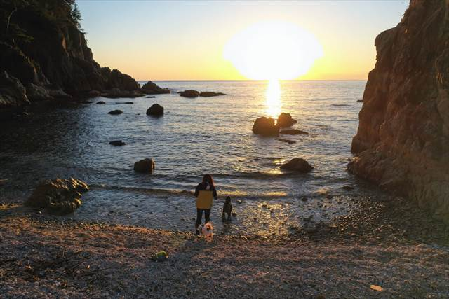 日本海に沈む夕日と犬達