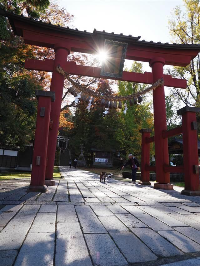 加茂山公園にある青梅神社