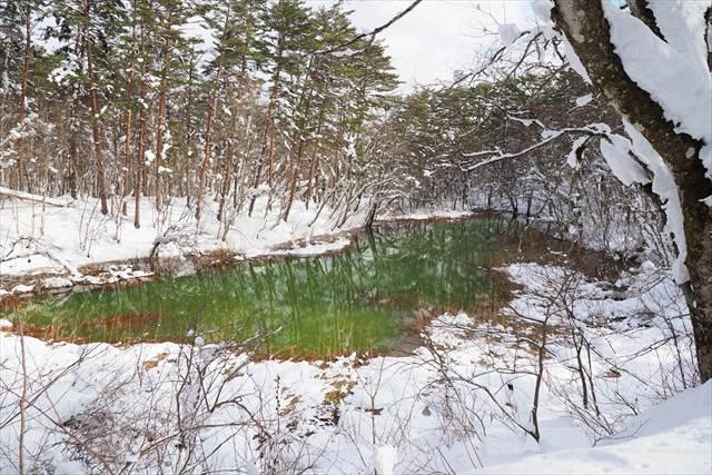 五色沼の一つ、赤沼