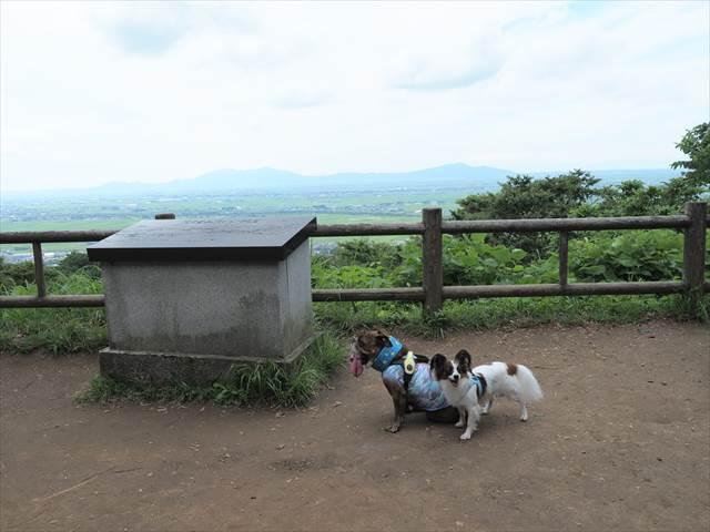 護摩堂山の山頂にて愛犬撮影