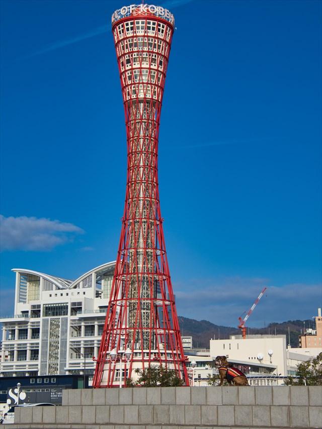 神戸ポートタワーと愛犬