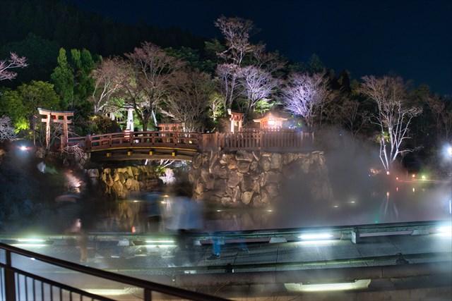 初詣で行った勝尾寺のライトアップが幻想的