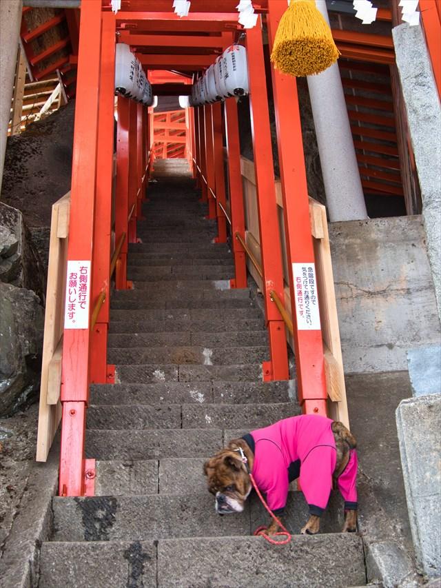 高龍神社の急な傾斜の石段